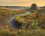 Estuary, Cushing Maine