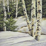 Warm Light, Birch
